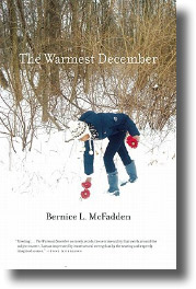The Warmest December Book Cover